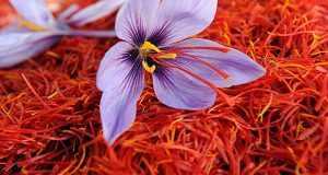 خواص زعفران دم کرده