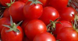 خواص گوجه فرنگی از کاهش وزن تا سلامت پوست و مضرات گوجه
