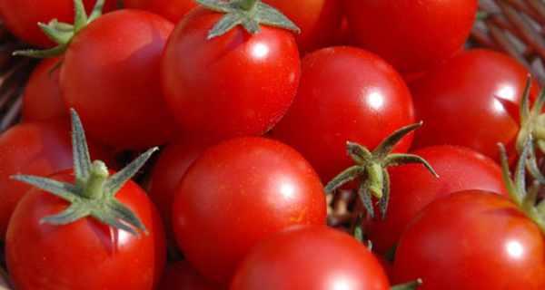 خواص گوجه فرنگی,gojeh farangi,مضرات گوجه فرنگی,o,hw ',[i tvk'd