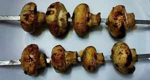 آموزش طرز تهیه قارچ کبابی و اصول کباب قارچ مجلسی و خوشمزه