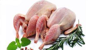 خواص گوشت بلدرچین برای کبد و قلب ، سلامت مغز و مضرات گوشت بلدرچین