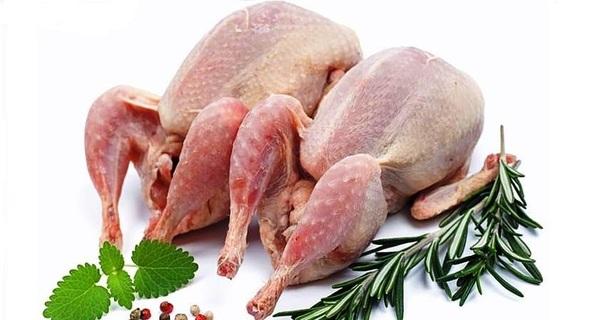 خواص گوشت بلدرچین,گوشت بلدرچین,بلدرچین,تخم بلدرچین,fgnv]dk,quail meat