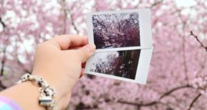 ایده های عکاسی جالب و کاربردی که از شما یک عکاس حرفه ای می سازد
